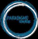 Paradigme Stratégie – Cabinet de conseil à Lyon Logo